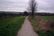Western edge of Allington