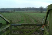 Fields near Hollies Farm