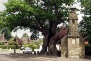 Lingfield Old Gaol