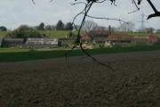Loves Farm