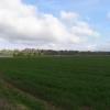 Beenham Barn Farm
