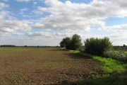 Field And Hedging