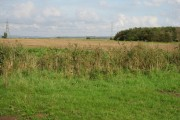 A View From The Big Bridleway