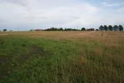 Farmland near Thorpe