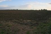 Farmland on Cross Lane