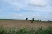 Coldhill Lane, view of Garlic Flats
