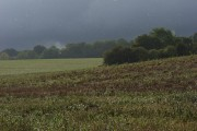 Sunshine and showers near Hungerford