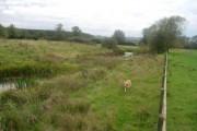 Tetchwick Moat