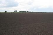Across A Field To Blacktoft House