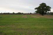 Farmland off Desford Lane