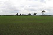 One Field Of Faxfleet Grange