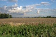 Field And Wolds