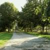 Track leading to Monk's Farm, near Dedham, Essex