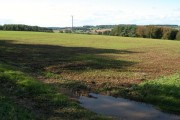 Farmland above Beale's Copse