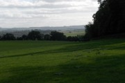 Pasture above Leverton