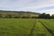 Across the Fields to Box Hill