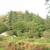 The Craig-y-Llan Plantation