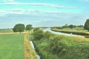 Pollington, Aire and Calder Canal