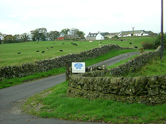 Road to Barnbackle Farm