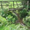 Footbridge over the River Rother