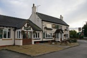 The Elephant, Shavington