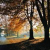 Oulton Park, Autumn