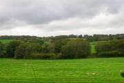 Weald near Lions Green