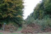 Harryhill Plantation