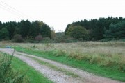 Haywood Plantation