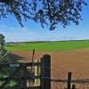 Farmland Near Low Wood