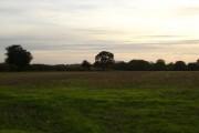 Farmland near Tollard Farnham