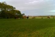 Fields near West Fitz