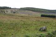 Forbridge Hill