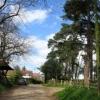 Beenham Church and Graveyard