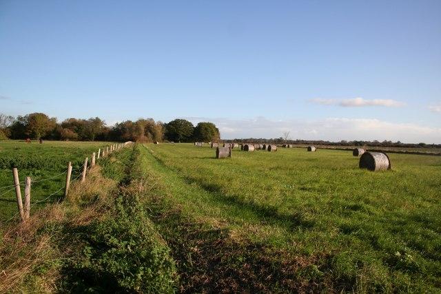 Farmland off Pauls Lane