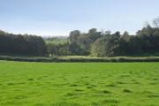 Farmland at Groby Park Farm