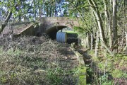 Boardwalk under disused railway bridge Alderholt Dorset