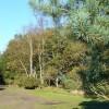 Bridleway near Hankley Cottage