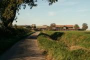 Tye Farm, close to Newman's Green