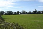 Farmland north of A354