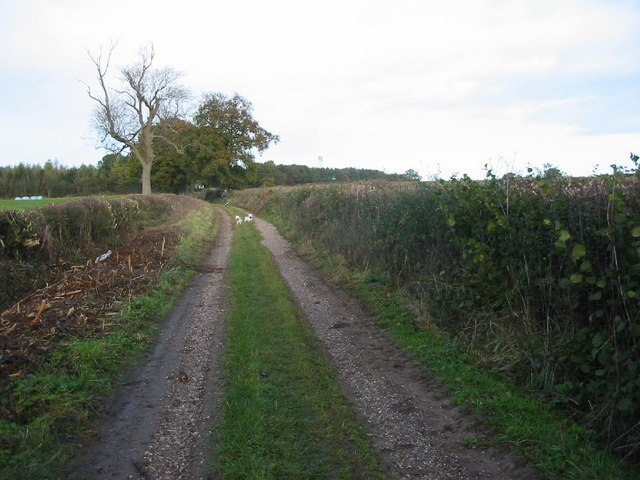 Wood Lane near Brailsford