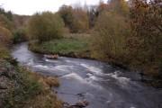 The River Bann at Tullylish