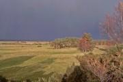 Farmland north-west of Hunting Hill