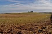 Hilltop near Tomhommie viewed from near Ballinreich