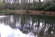 Lake at Pencarrow House near Bodmin