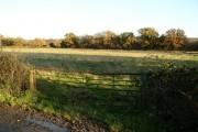 Farmland north east of Calne