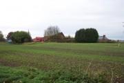 West Drove Farm