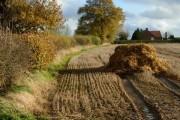 Farmland west of Frolesworth