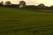 Farmland near Ludgershall