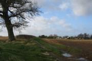 Bonnyleigh Hill
